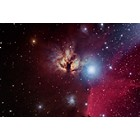 NGC 2024 Flame Nebula in Orion at US Store
