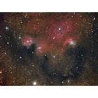 NGC 6559 - Nebula in Sagittarius