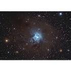 NGC 7023 - Iris Nebula
