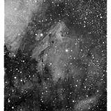 IC 5067 - Pelican Nebula