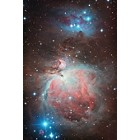 M42: Orion Nebula 11-14-12