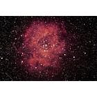 NGC2244 the Rosette Nebula